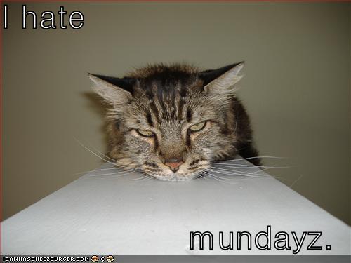 I hate mundayz
